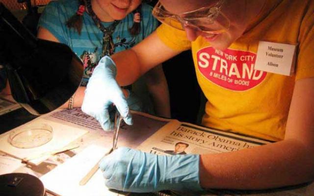 Children engaging in science activities