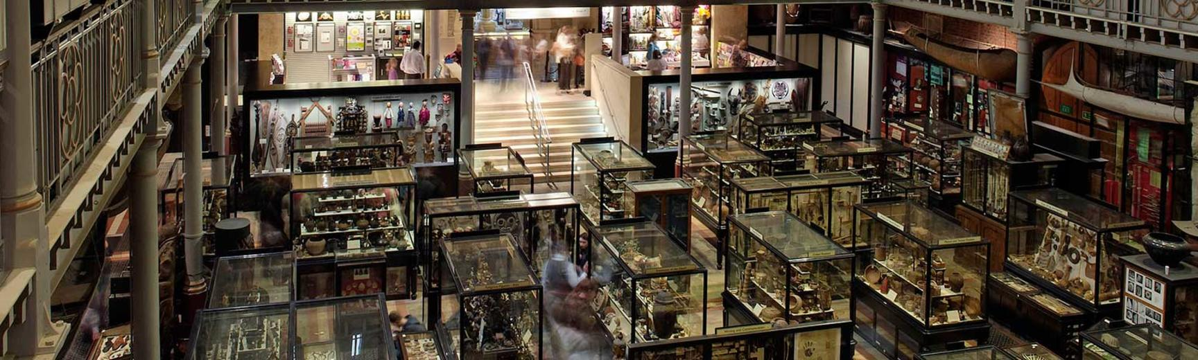 Gallery View, Pitt Rivers Musuem