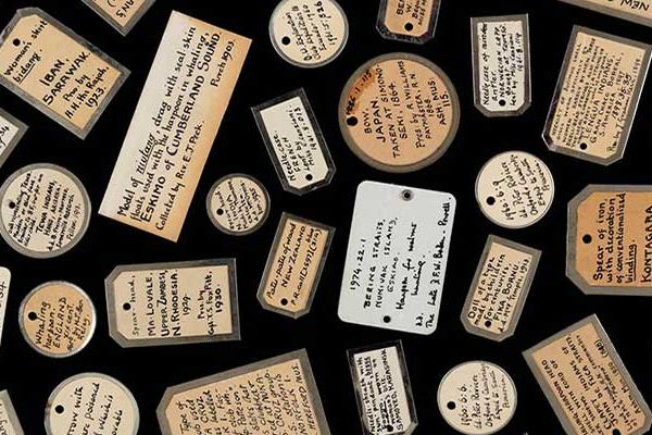 Collage of Object Labels, Pitt Rivers Museum