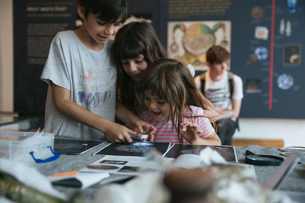 Children engaging with archaeology activity