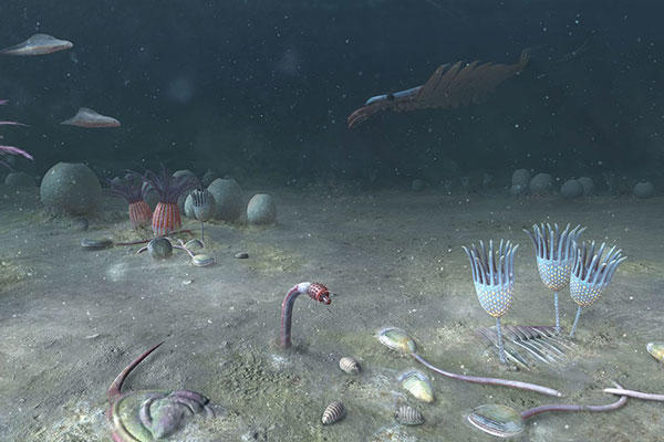 Colourful artist's impression of the sea floor 518 million years ago