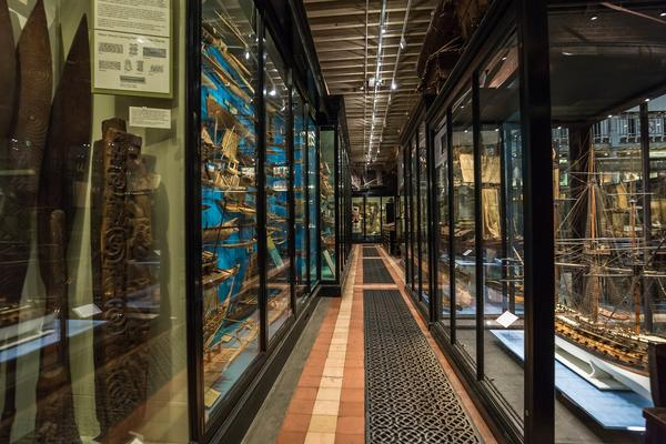 Display Cases at the Pitt Rivers Museum
