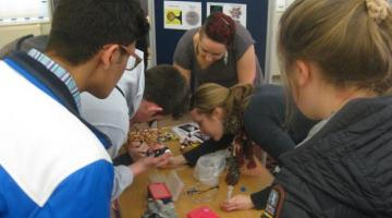 Students engaged in activities as part of Back from the Dead exhibition and programme